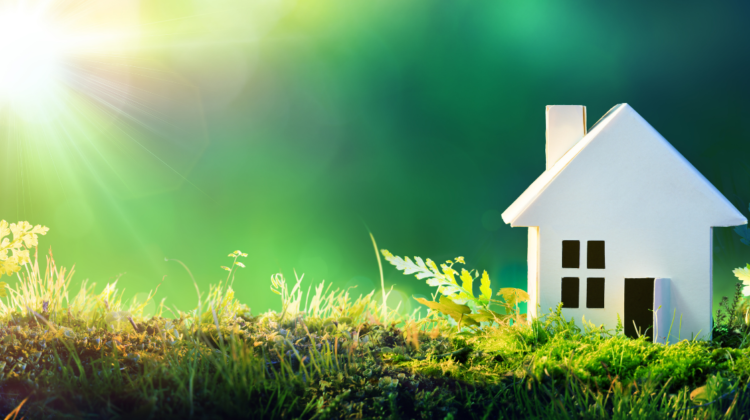 How to make your home more eco-friendly? 5 useful tips